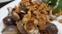Snails and shells siesta in Saigon
